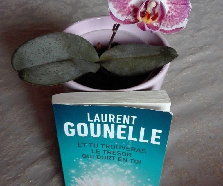 Chronique du roman «Et tu trouveras le trésor qui dort en toi» de Laurent Gounelle.